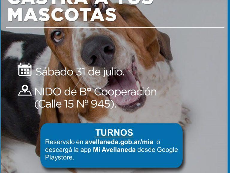 Obtené turnos para castrar a tus mascotas desde la app MIA