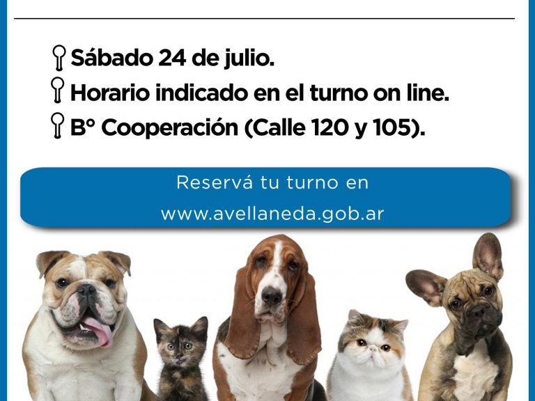 Castración de mascotas en Avellaneda: Se realizarán en B° Cooperación, previa solicitud de turnos on line